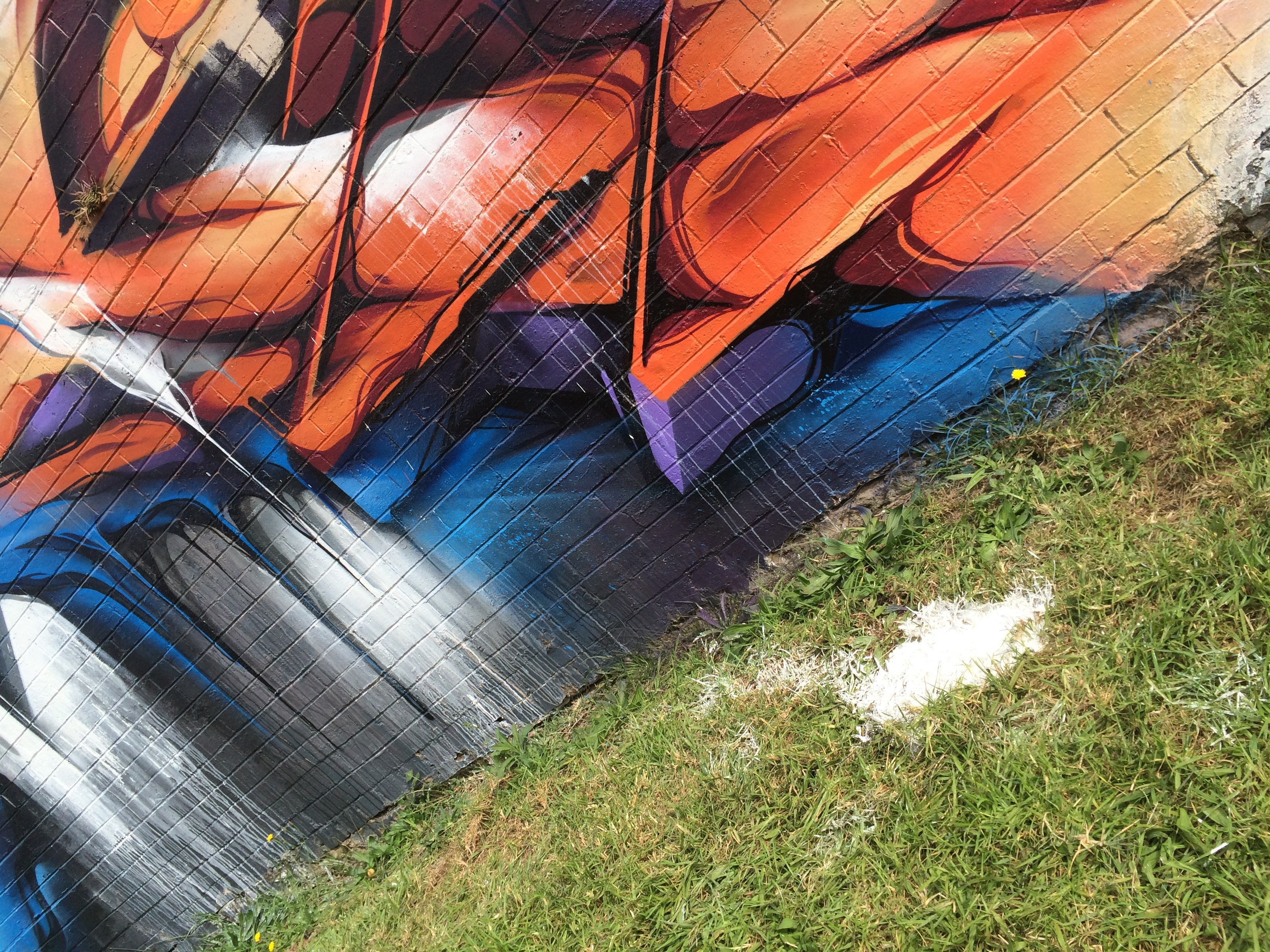 A work by Does - Toowoomba australia detail mural 2