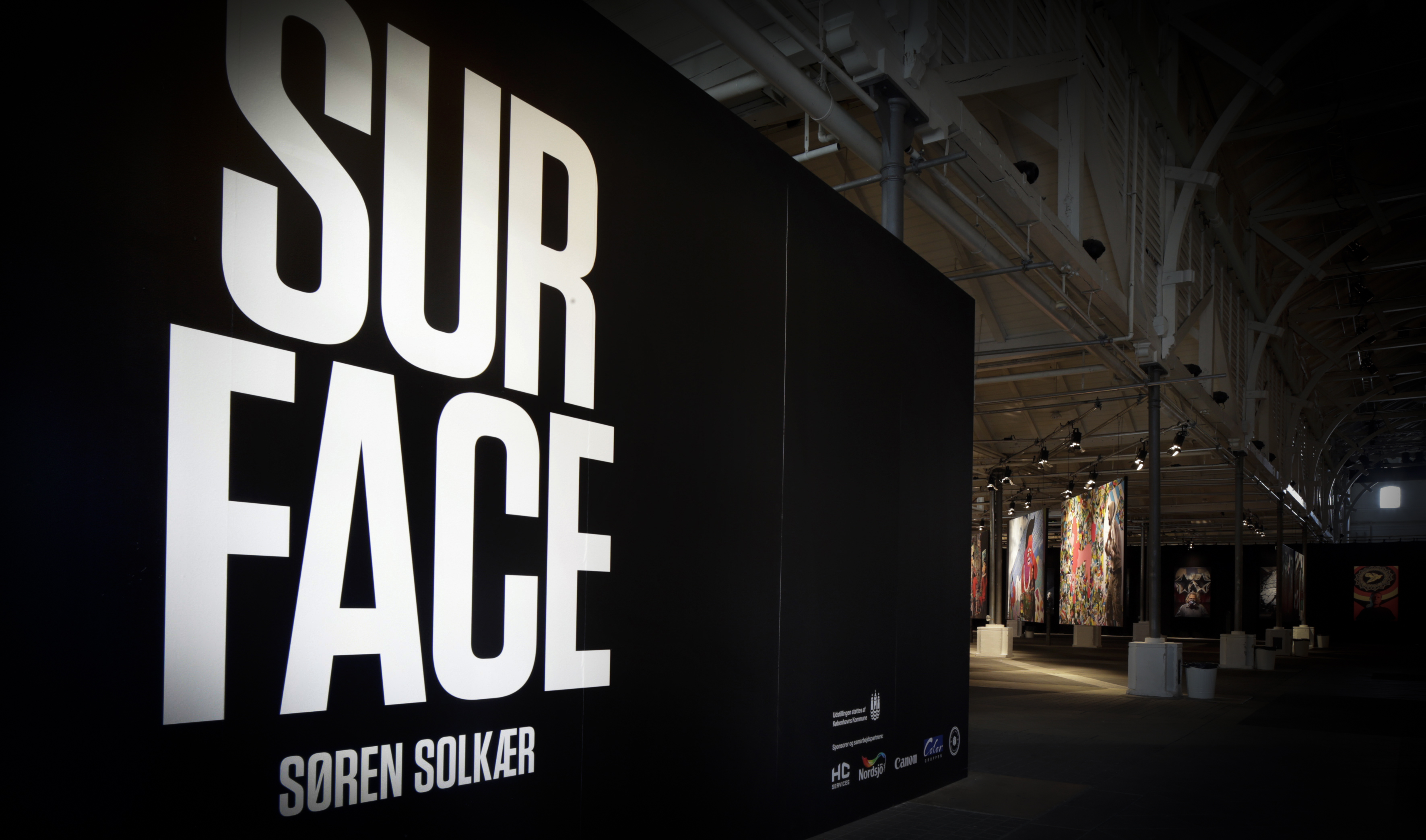 A work by Does - Surface exhibition soren solkaer