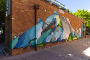 201905-DOES-QUT-Brisbane_LukeShirlaw_IMG_0955